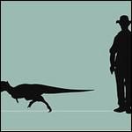 Новый вид динозавров.