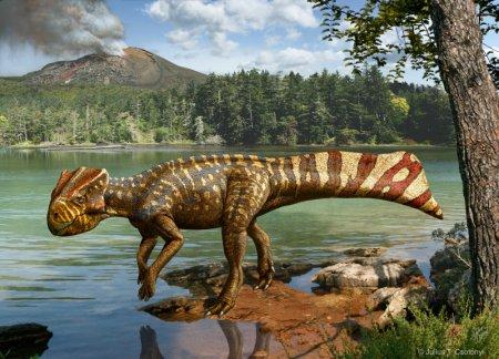 Был обнаружен первый в мире рогатый динозавр