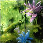 Немного о ботанике, зоологии и пришельцах