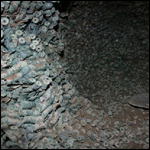 4 тонны старинных момет было найденно рабочими в Китае