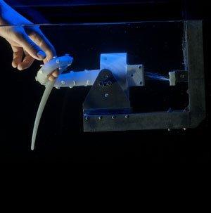 Был создан прототип щупальца для робота