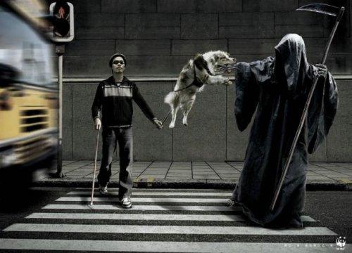 Люди, которых боиться смерть