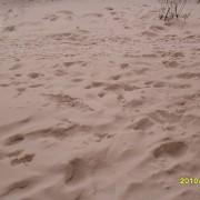 Снег светло-коричневого цвета выпал в Самаре и области