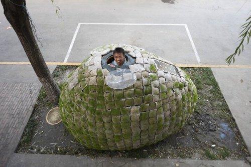 Эко-дом в форме яйца