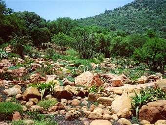 Ученые обнаружили в Африке грунтовые воды-отшельники
