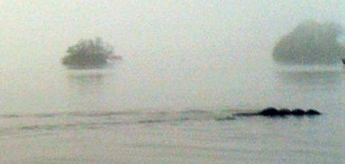 Туристы нос к носу столкнулись с подводным чудовищем