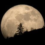 20 марта Луна побила все рекорды