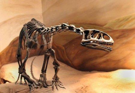 Команда палеонтологов обнаружила в Аргентине останки динозавра нового вида