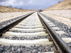В Северном Китае гусеницы остановили поезд