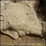 Во время раскопок погребального храма египетского фараона XVIII обнаружили алебастровый колосс