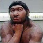 Современные люди вытеснили из Европы неандертальцев, выиграв конкуренцию с ними количеством