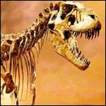 Глобальное потепление и динозавры
