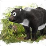 В окрестностях испанской Сарагосы обнаружены зубы древнего родственника гигантской панды