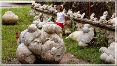 В центре и на юге Румынии, вдали от городов, встречаются живые  камни