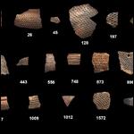 Археологи впервые получили прямые доказательства ведения древними людьми молочного животноводства