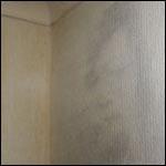 Образ покойного мужа стал появятся на стене в спальне
