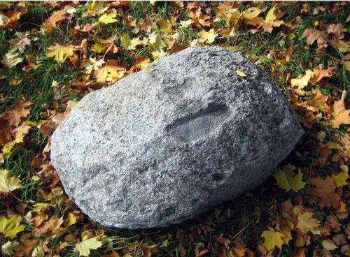 Тайна камней-следовиков