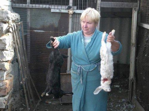 Чупакабра добралась до Казахстана