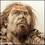 С Неандертальцами не скрещивались только с жители Африки