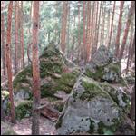 Таинственные сооружения обнаружили около села Смолькино в Сызранском районе