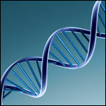 Немного о ДНК и эволюции