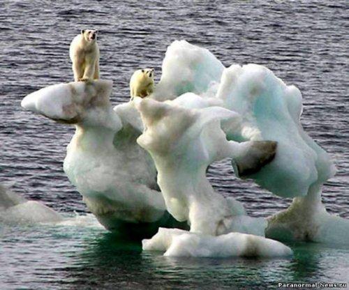 Климат изменился