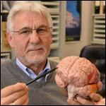 """Немецкий невролог утверждает, что нашел темный участок мозга, в котором скрывается """"зло"""""""