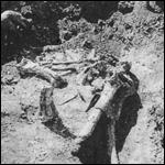 Странные остатки костей