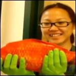 Пол метровая золотая рыбка