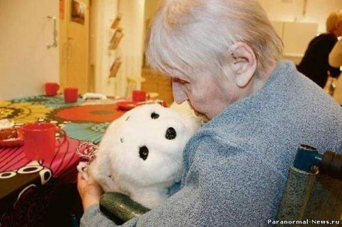 Роботы-тюлени теперь и в Финляндии