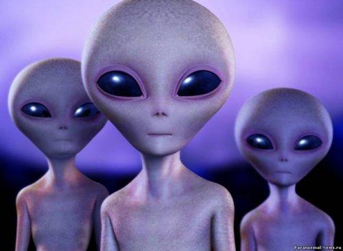 Белокожие пришельцы