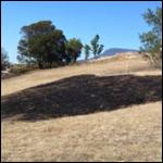 Огненный луч с неба поджег в Тасмании траву