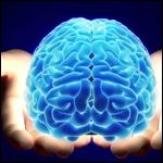 Появится ли когда-нибудь возможность пересаживать человеческий мозг