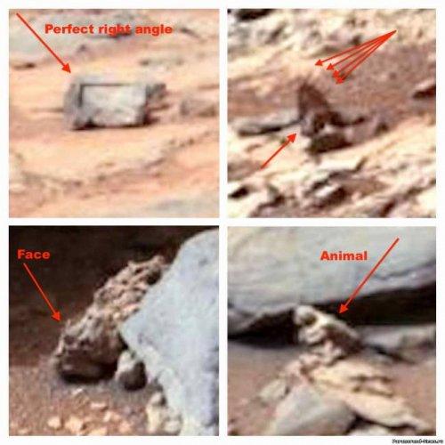 Удивительная находка на фотографиях с Марса