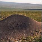 Почему в Якутии боятся «Долины смерти»