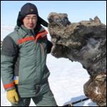 Ууникальная по сохранности туша самки мамонта найдена на Ляховских островах