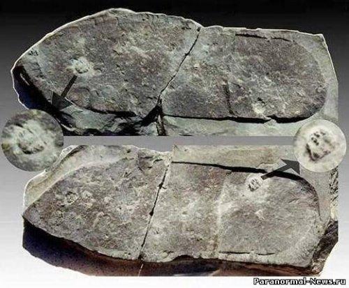 Следы ископаемых отпечатков обуви