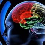 Имплантат, способный восстанавливать память