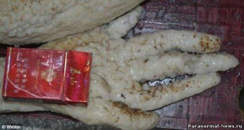 Китайский фанат НЛО подделал пришельца и угодил за обман в тюрьму