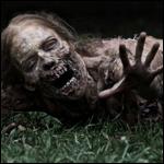 У Виргинских островов выбросило на берег живого зомби