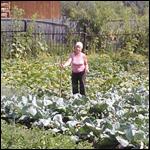Необычный случай: Огонек в огороде