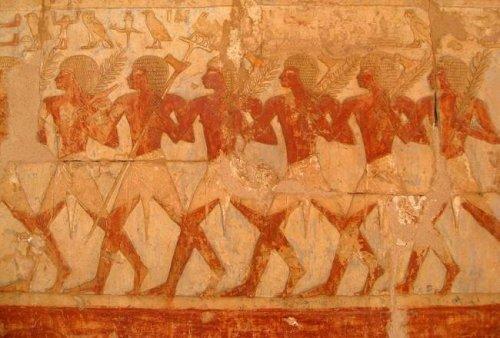 Загадка древнего государства Пунт