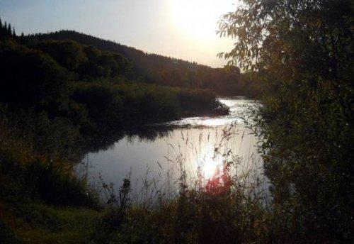 Тропою кузбасского йети