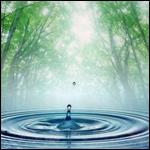 Мудрость воды: Гнев Матери-Природы