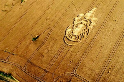 Ученые исследуют августовский узор на поле в Чехии