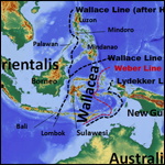 Антропологи намекнули на мореходные успехи денисовцев