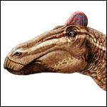 Гребни обогатили социальную жизнь утконосых динозавров