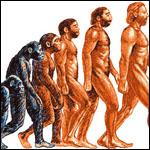 Треть американцев отвергла эволюцию человека