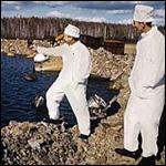 Смертоносное озеро Карачай