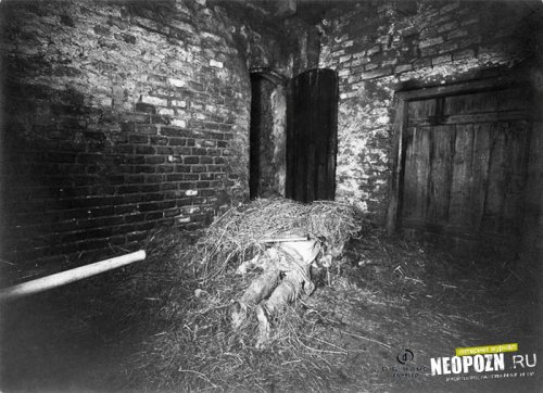 Мистические убийства на ферме Гинтеркайфек
